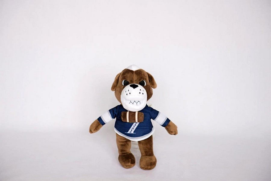 Custom Plush Toy -Immaculate H.S.