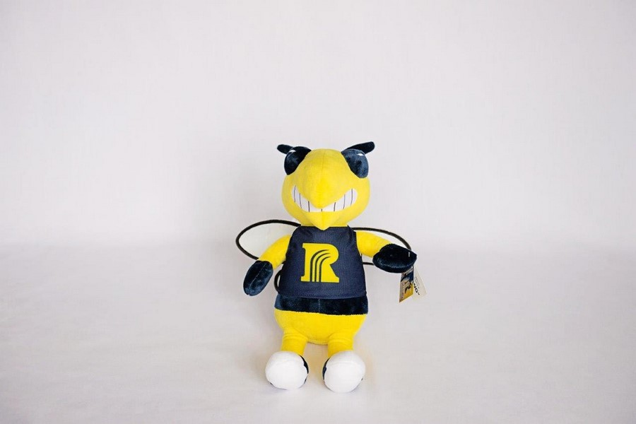 custom plush mascot toys Rochester Community and Technical College rochester minnesota