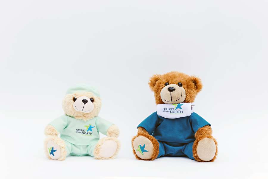 Branded Custom Plush Toy -Spirt of the North Healthcare Bears