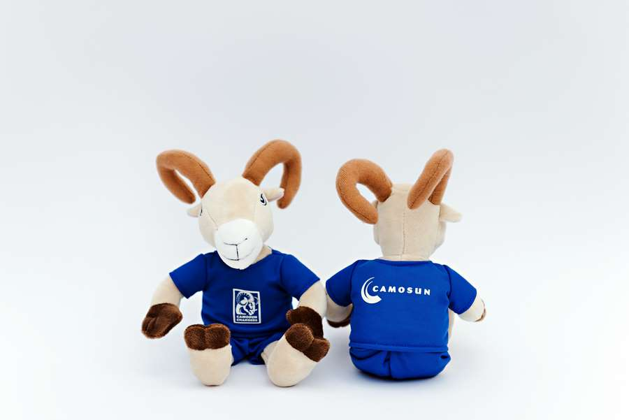 Branded Custom Plush Toy -Camosun Ram (front and back)