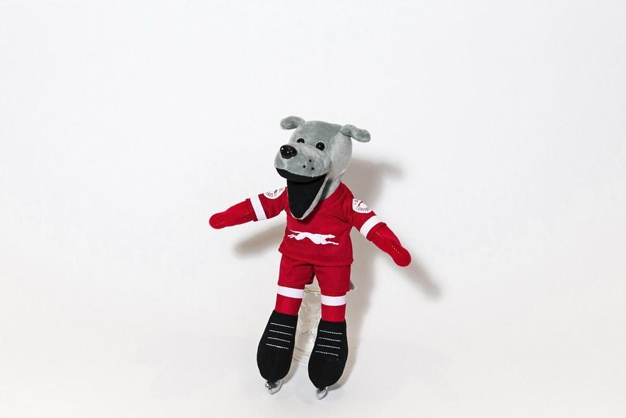 Custom Plush Mascot - Dash Skating Dog