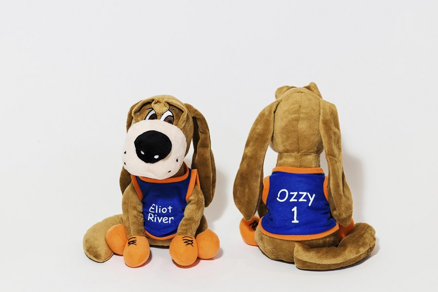 Custom Mascot Dog -Ozzy