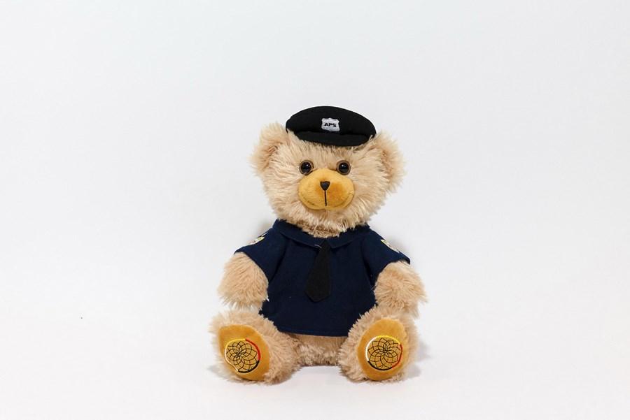 Branded Teddy Bears- Anishanbek Bear