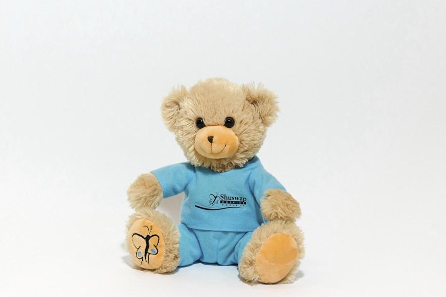 Branded Custom Plush Teddy Bear in Scrubs -Shuswap Hospice Bear