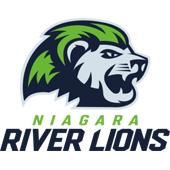 Niagara River Lions - custom plush toy manufacturers